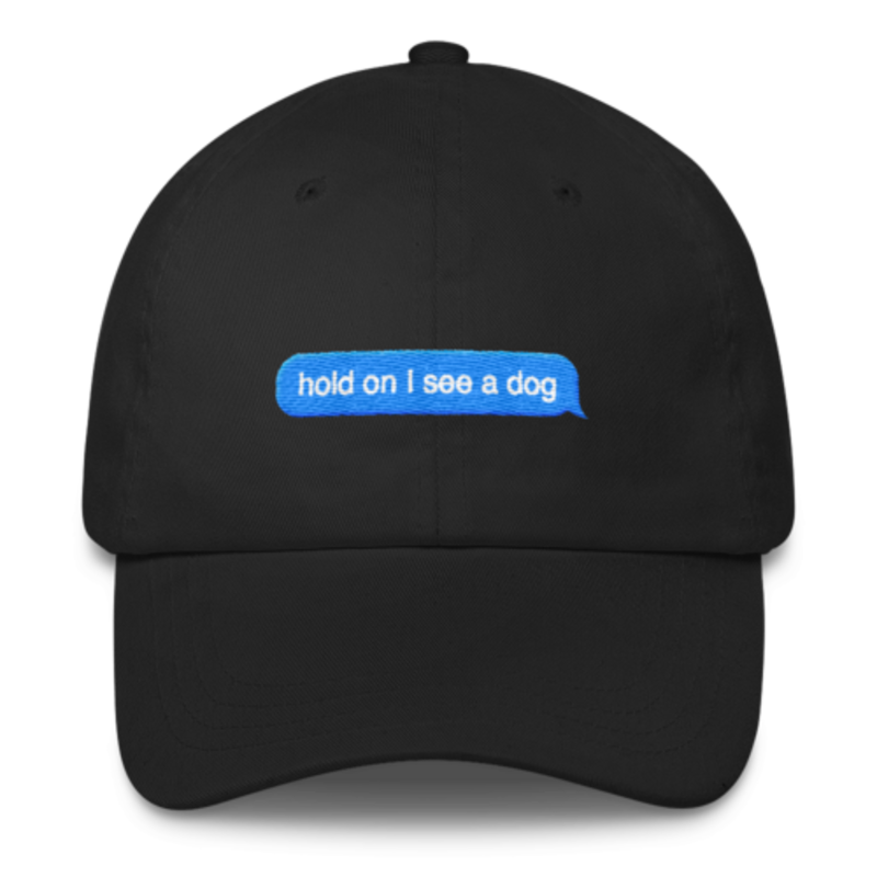 e97246db Hold On I See A Dog Snap Back Unisex Dad Hat – Print Your Pet