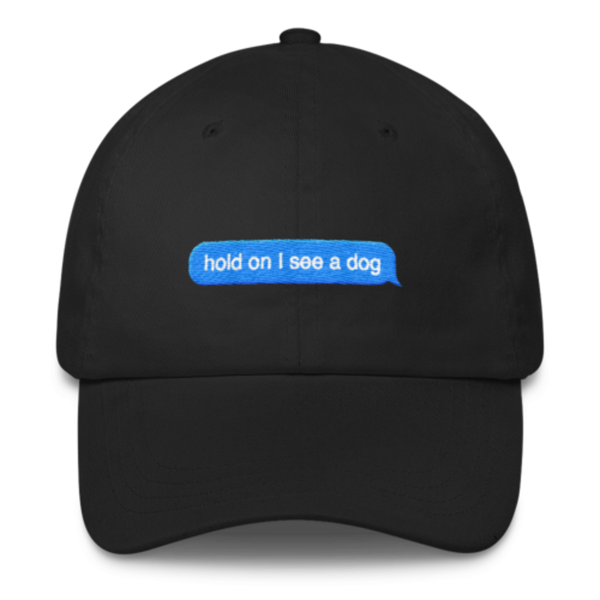 Hold On I See A Dog Snap Back Unisex Dad Hat