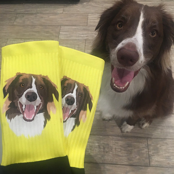 Custom YOUR-Pet Printed Socks [for humans]