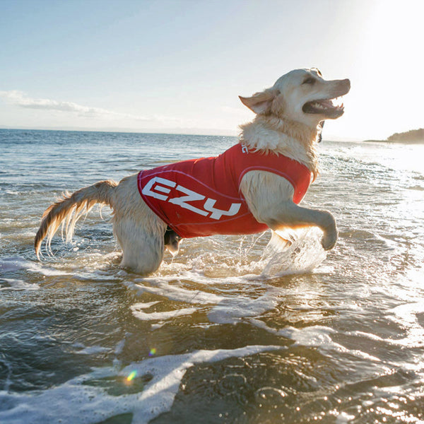 The EzyDog Dog Rashie - UV Protection & Swim Shirt
