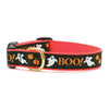 Collars & Leashes<br>Halloween & Thanksgiving Collection<br>4 Patterns