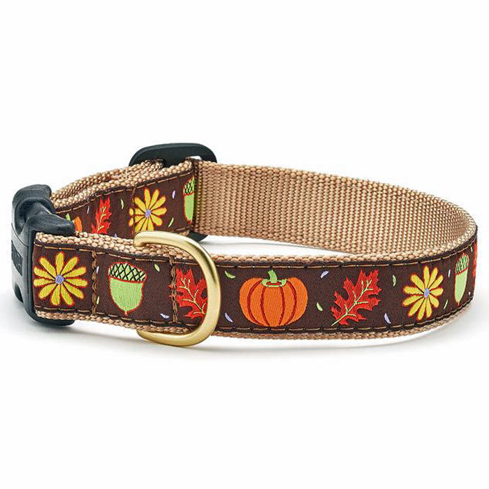 Harvest Time Dog Collar & Leash