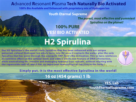 H2 Super Spirulina (Bio Activated, Hydrogen Ion Reinforced) 1lb (454 grams) 16 oz