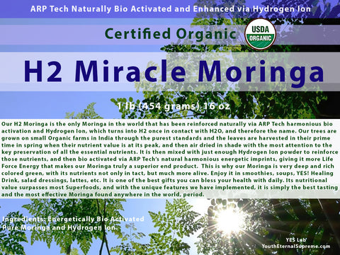 H2 Miracle Moringa (Bio Activated, Hydrogen Ion Reinforced) 1lb (454 grams) 16 oz