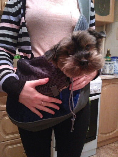 Luxury Pet Carrier