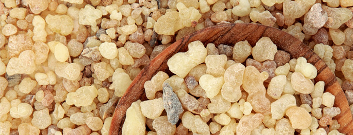 Frankincense: History's Remedy