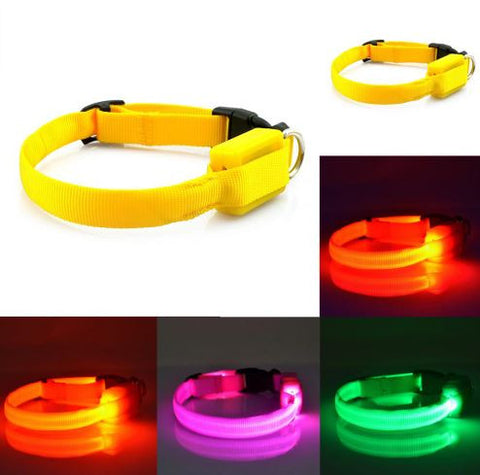 Solid Nylon LED Pet Collar - MyGearGlobal