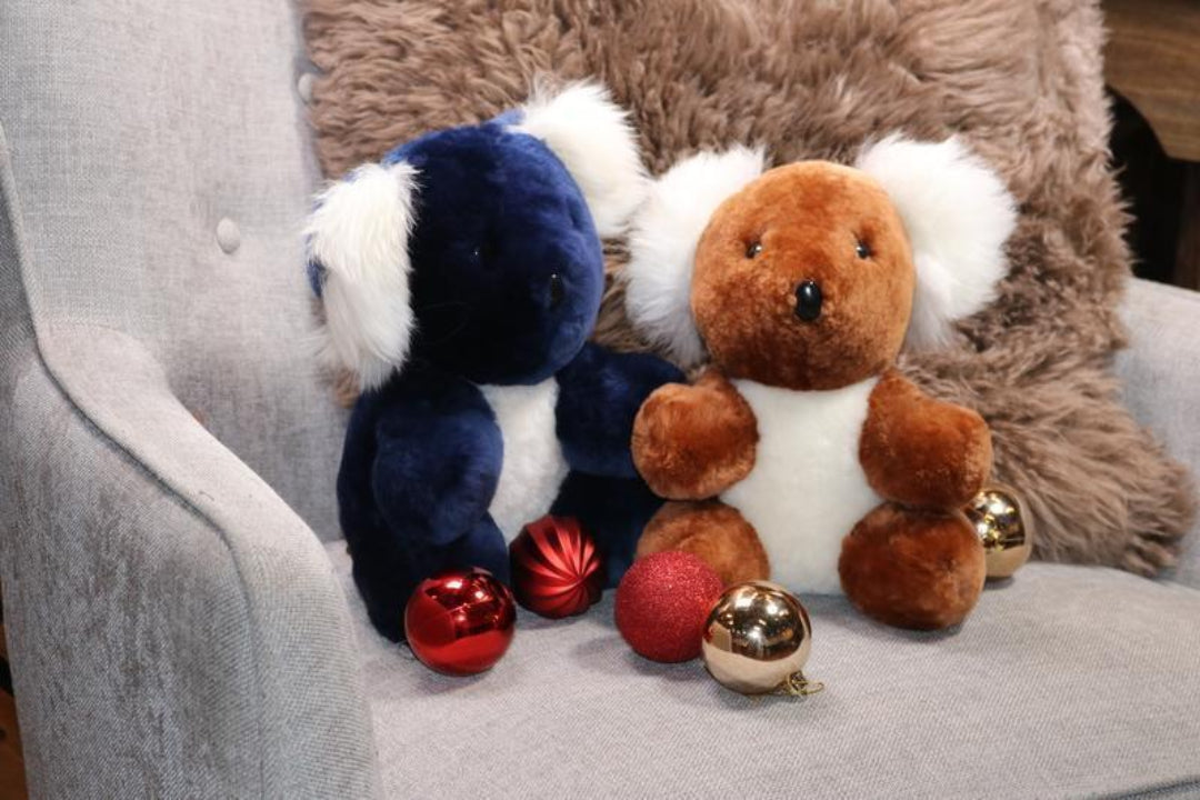 koala teddies for charity