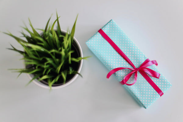 corporate gift wrapped in paper