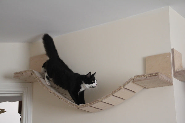 "Cat wall suspension bridge long 56"" or short 42"""