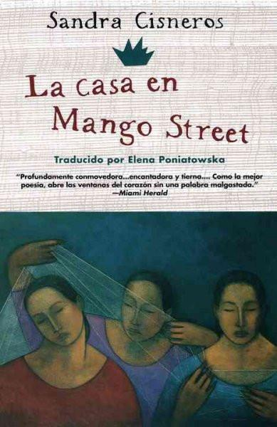 La casa en mango street / The House on Mango Street (SPANISH) (Vintage Contemporaries)