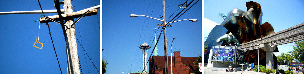 ROADRUNNER SHOEFITI: SEATTLE