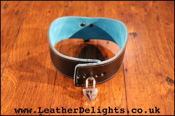 "2"" Wide Contour Collar with Welded D Ring"