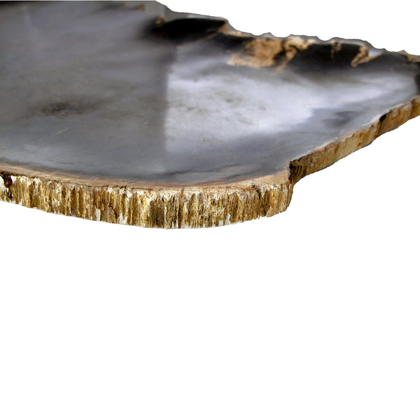 Petrified Wood Platter