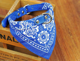 Bandana/Scarf Dog Collar
