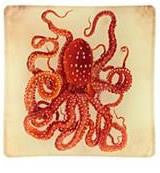Tray  Octopus Glass Mini Tray D