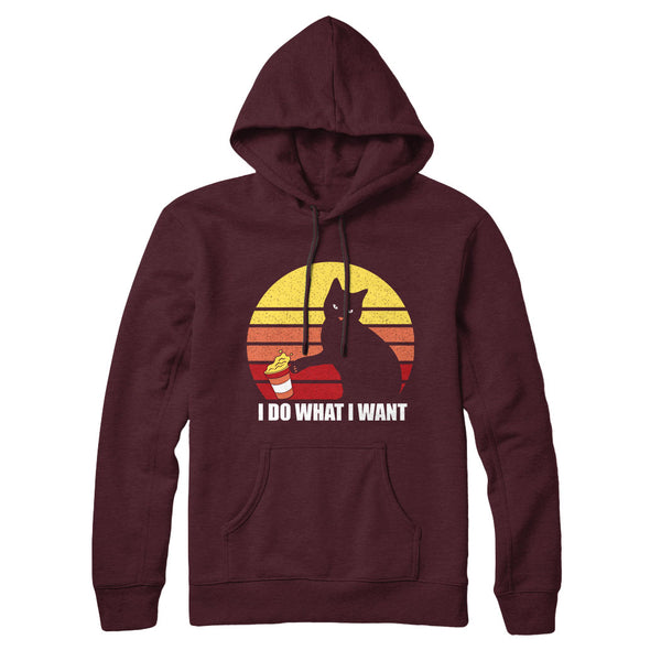I Do What I Want One - Hoodie