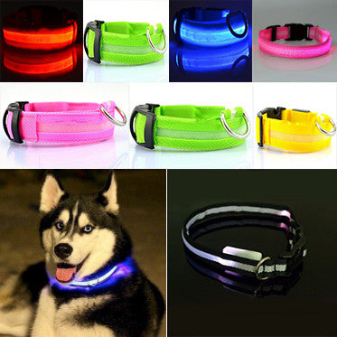 Flashing LED Safety Dog Collar