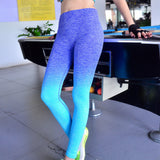 Sporty Womens Ombre Fitness Leggings