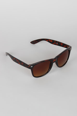 Classical Silhouette Sunglasses - Beauty & Bronze Clothing and Accessories