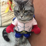 Ripped Boxer Halloween cat/dog costume
