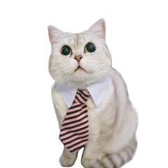 Cat/Dog Professional Gentlemen Tie