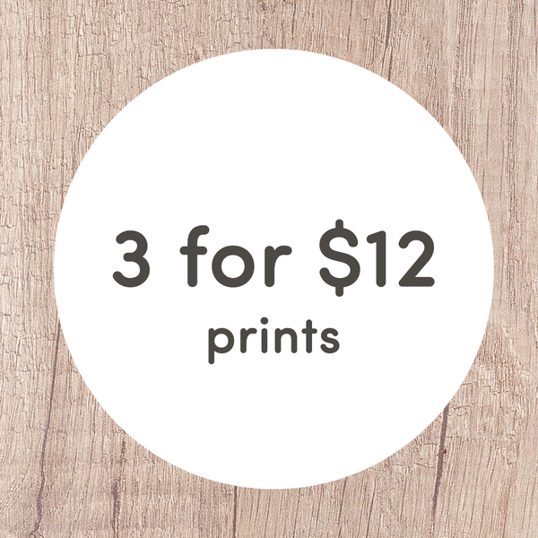 3 for $12 Mini Prints