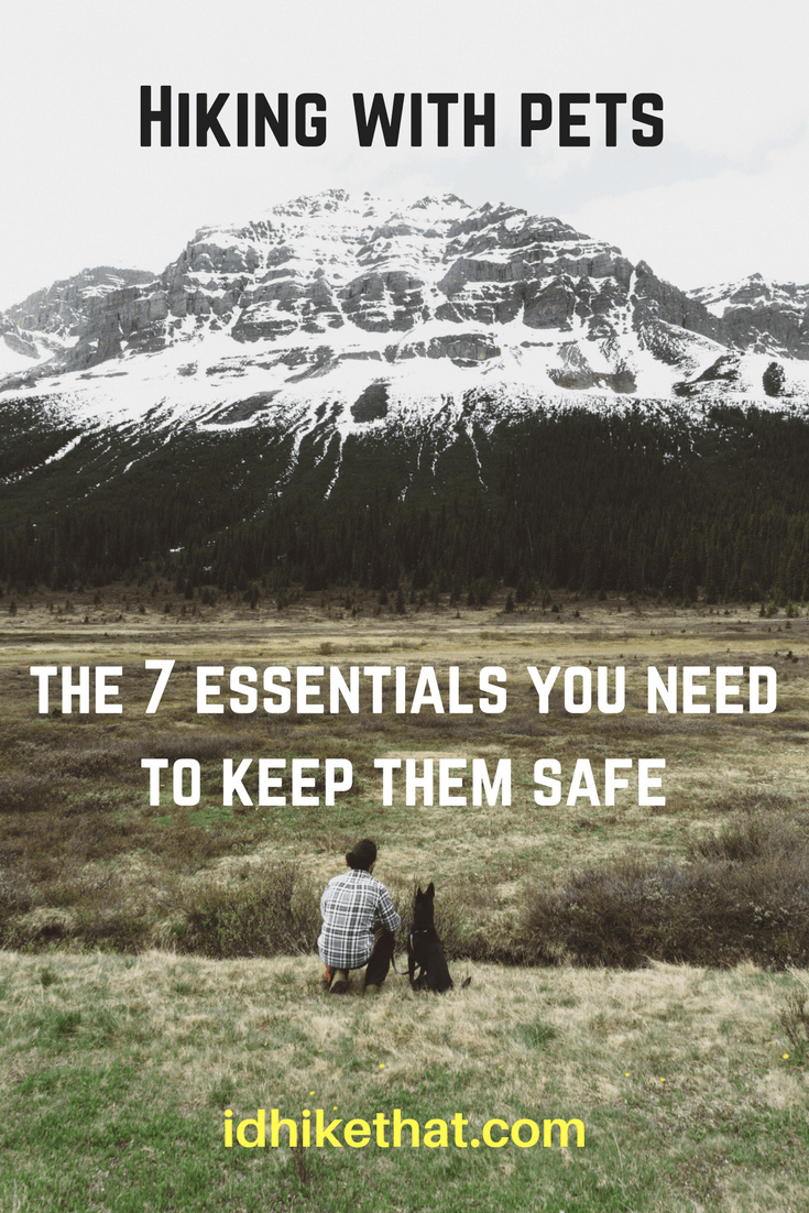 Hiking with pets, the 7 essentials you need to keep them safe. The I'd Hike That crew knows how important our pets are. Find out how to keep your furry hiker safe on the trails.