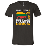 made in Lithuania -- Guys/Gals Jersey V-Neck T-Shirt