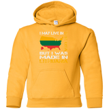 Made in Lithuania -- Youth Boys/Girls Hoodie Sweatshirt