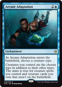 Arcane Adaption - 46/279 - Rare
