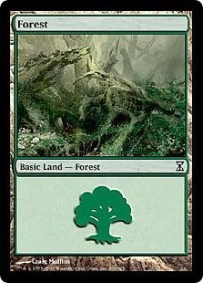 Forest - 300/301 - Common Land