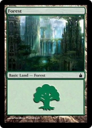 Forest - 303/306 - Common Land