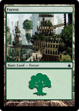 Forest - 304/306 - Common Land