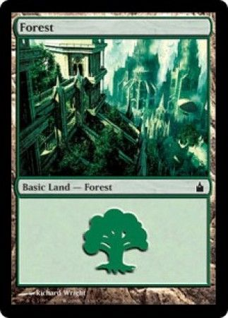 Forest - 306/306 - Common Land