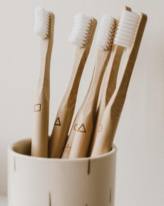 Bamboo Toothbrush | 4 Pack