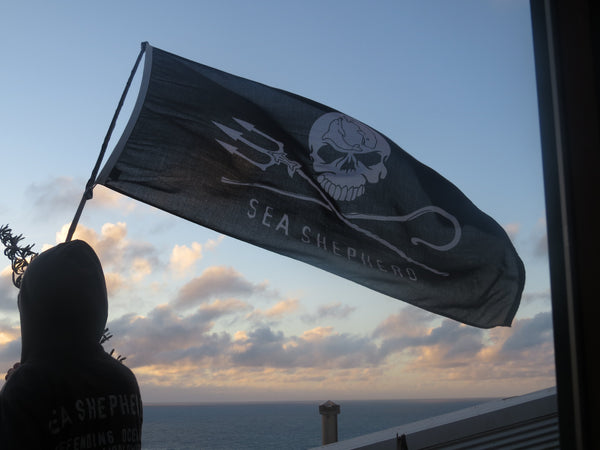 Jolly Roger Marine Flag Large