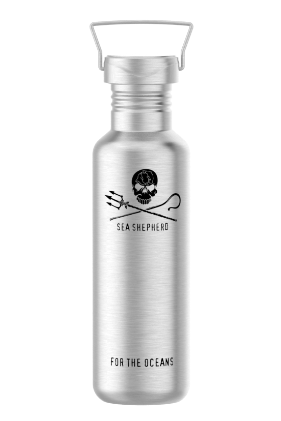 Jolly Roger Stainless Steel Water Bottle