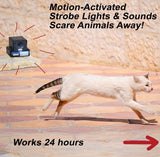 PestAway Ultrasonic Animals Repeller Cats Dogs Repellent Deterrent with Motion Sensor