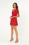Rimini Rose Floral Dress