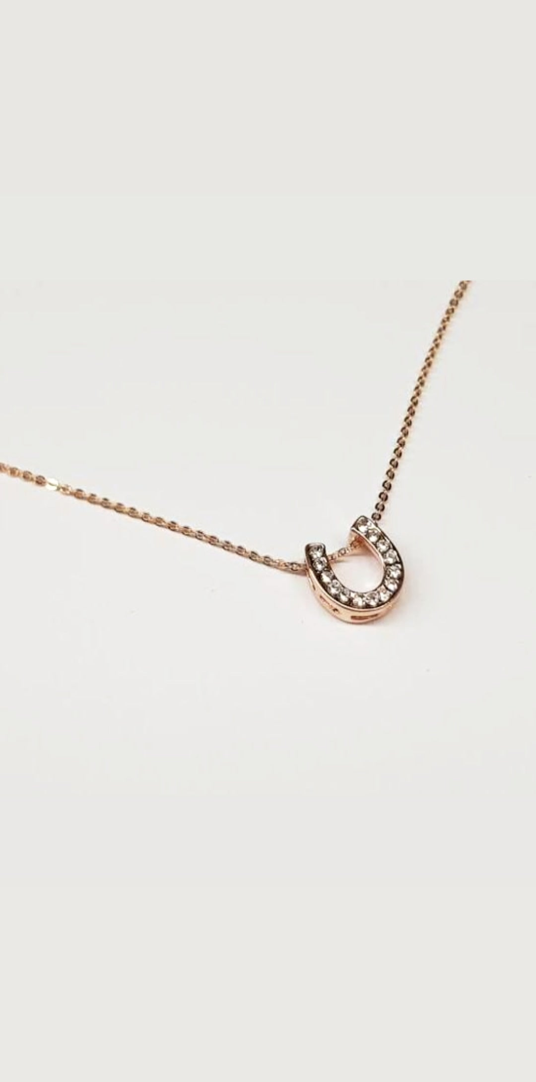 Rose gold plated horseshoe