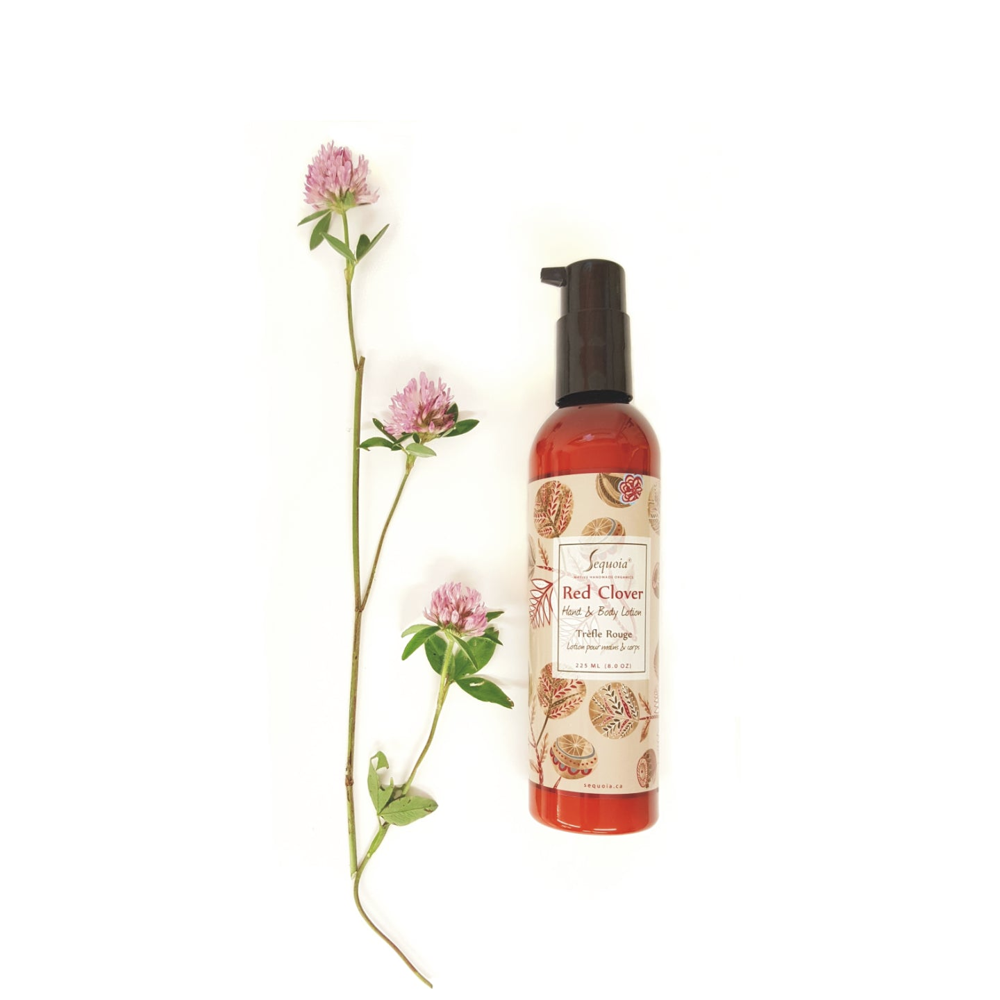 Red Clover Lotion