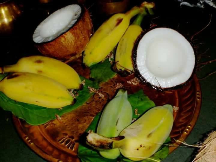 Birth of Coconut