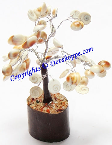 Gomti Chakra tree for Goodluck and Positive energy - Devshoppe