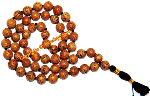 Kaya kalp mala for removal of evil thoughts and energy