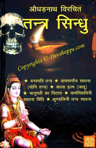 Augharnath Virchit Tantra Sindhu - Occult book hindi - Devshoppe