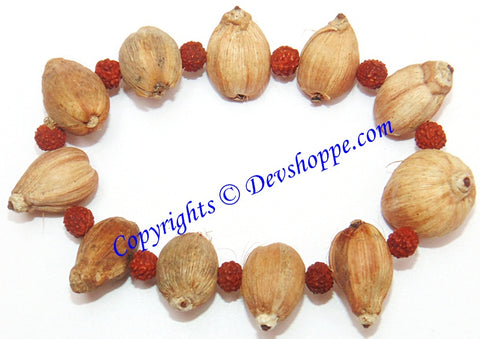 Laghu nariyal bracelet for prosperity and wealth