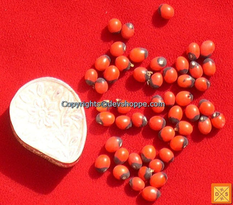 Red Chirmi Beads in Silver Box -  Very Rare Lucky Charm - Devshoppe