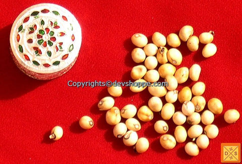 White Chirmi Beads in Silver Box -  Very Rare Lucky Charm - Devshoppe