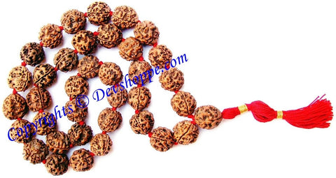 3 mukhi ( Three faced ) Rudraksha mala for pacifying Kuja (mangal) dosha , made from 3 mukhi rudraksha beads of Nepali origin - Devshoppe